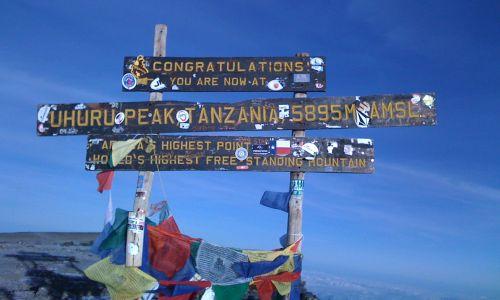 Besteigung des Kilimanjaro