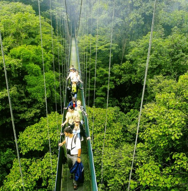 Costa Rica Dschungel