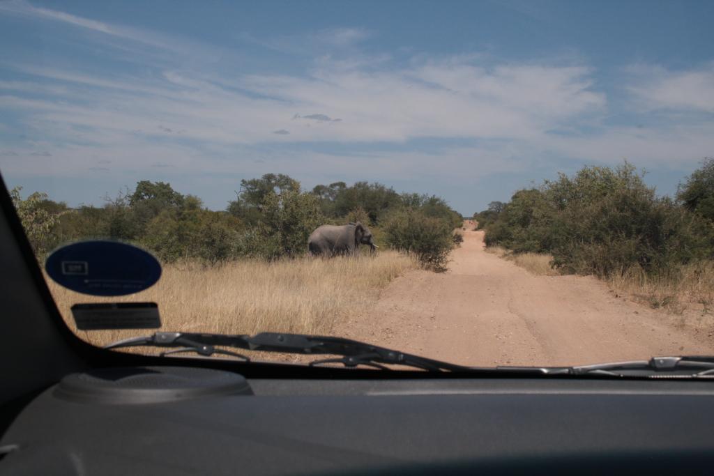 Das Abenteuer Südafrika 01