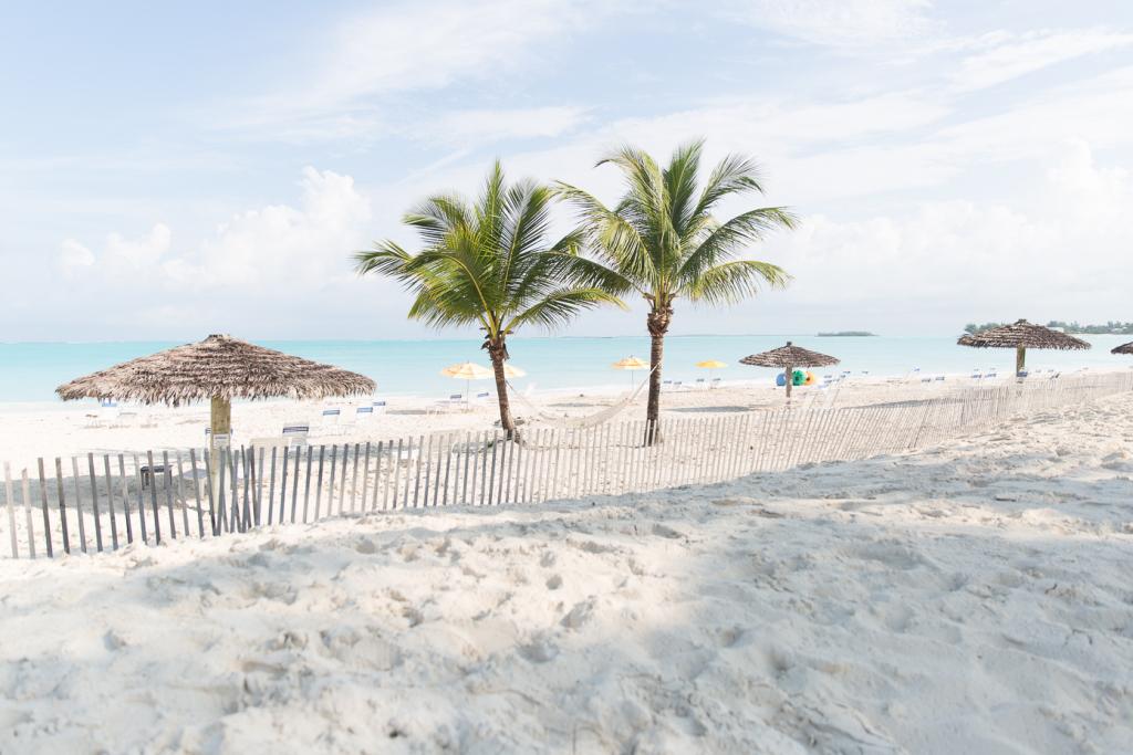 thelionheaded.com+ladyvenom-bahamas