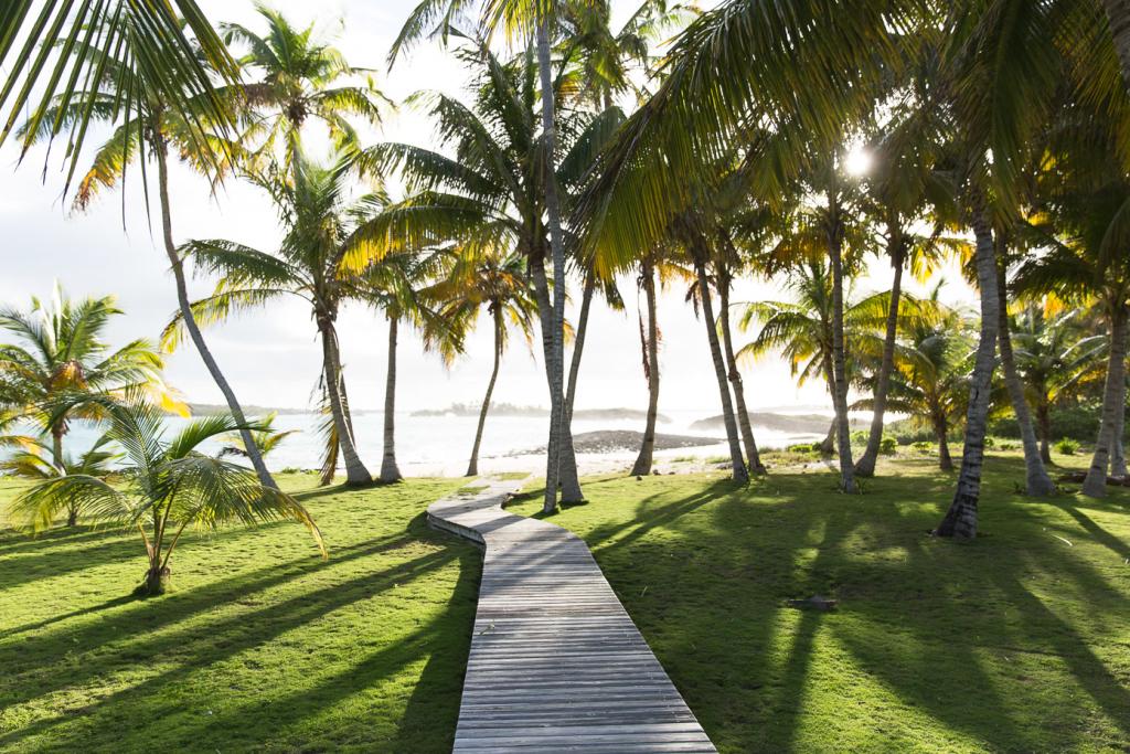 thelionheaded.com+ladyvenom-bahamas-11