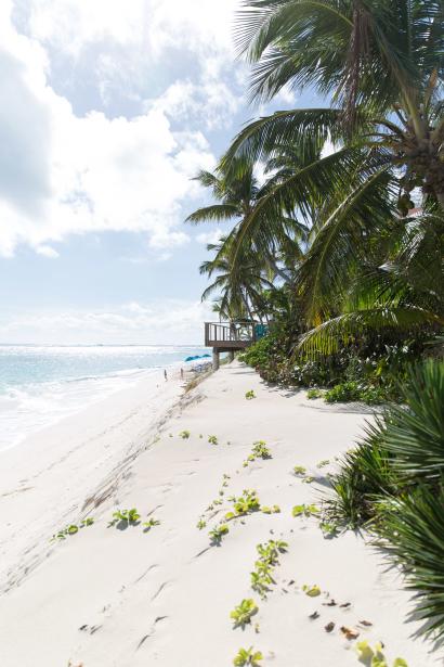 thelionheaded.com+ladyvenom-bahamas-13