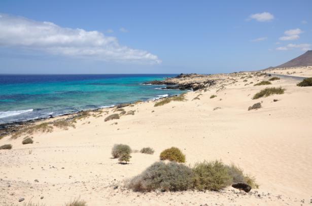 Fuerteventure_Spanien_Tui-Blog