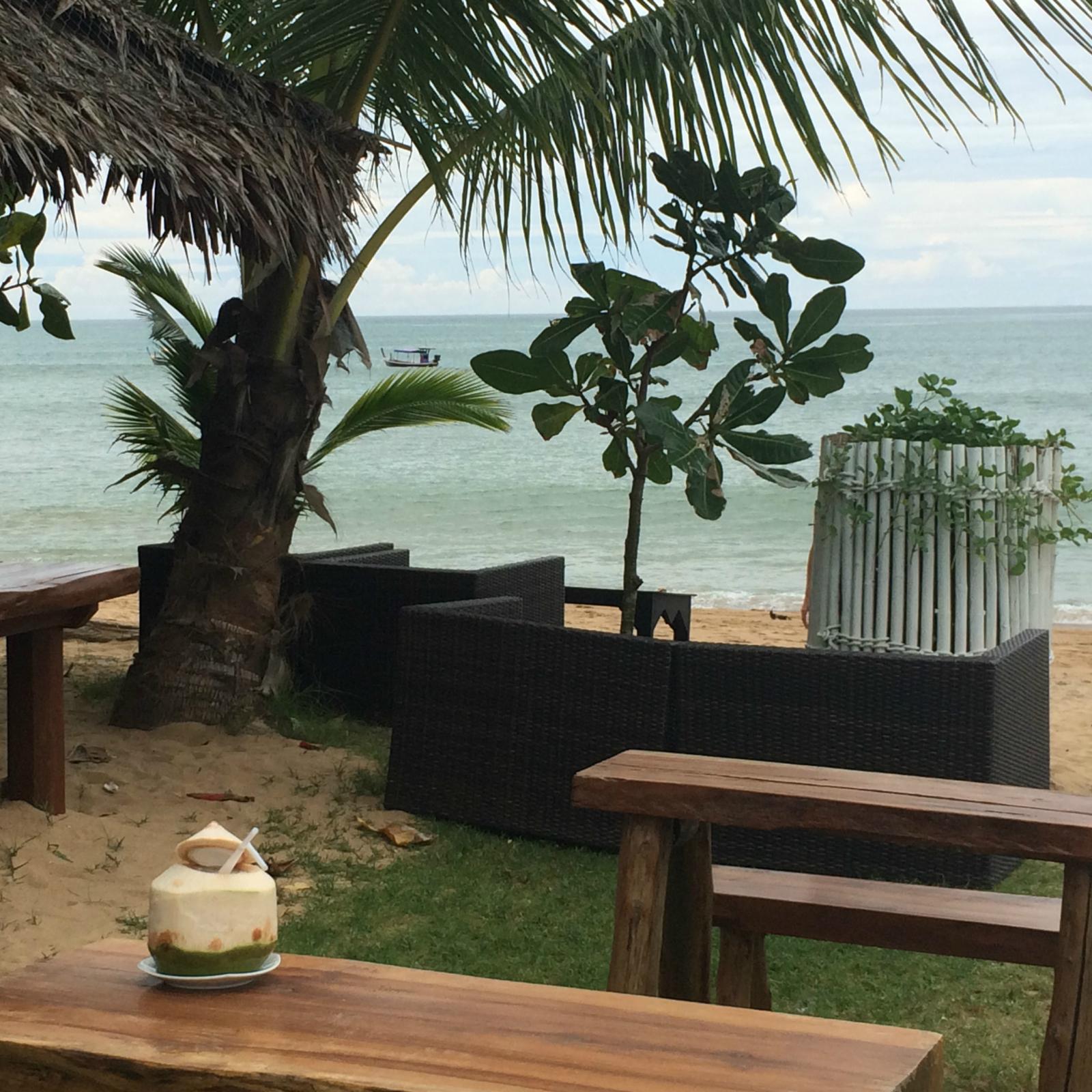 Thailand_Khao Lak_La Flora Resort Spa_Kokosnuss