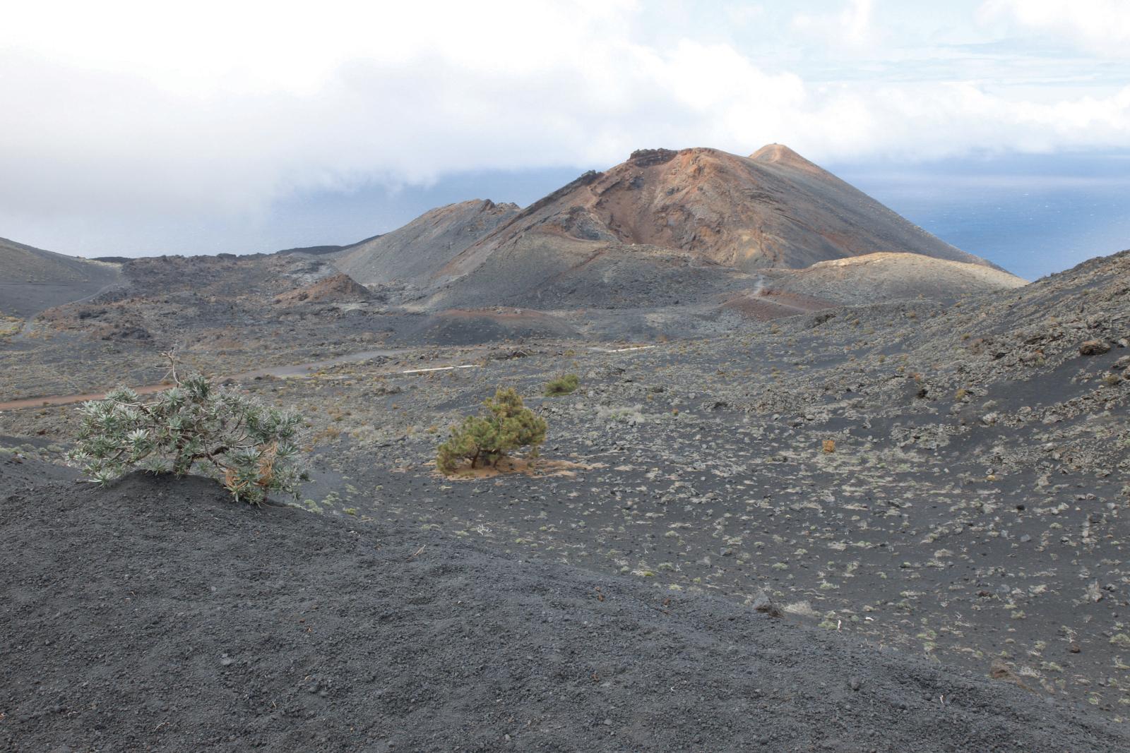 Kanaren_Kanarische Inseln_La Palma_Tenequia_Vulkan_Wanderung