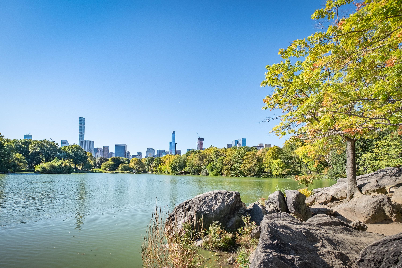 TUI_New York_Central Park