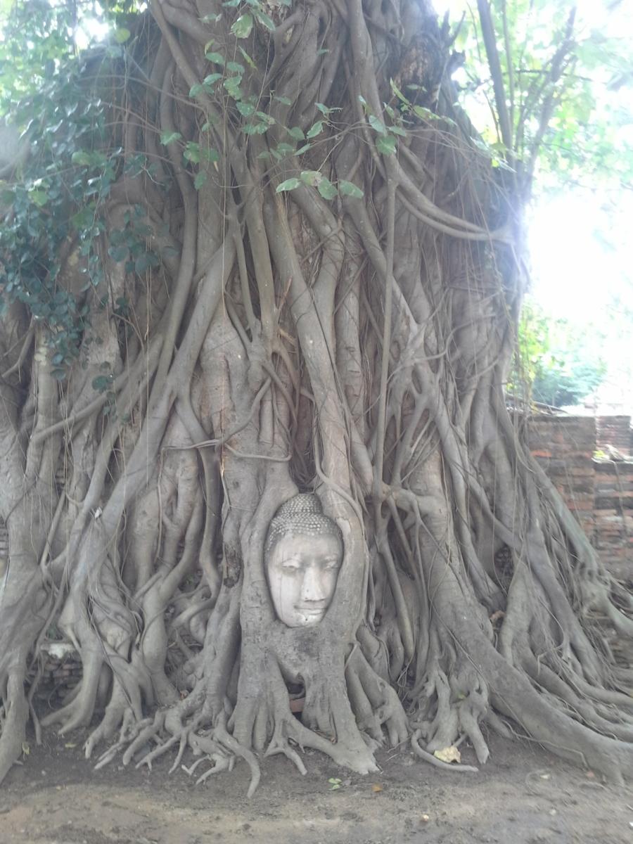 TUI_Thailand_Bangkok_Tempelanlagen Wat Mahathat03