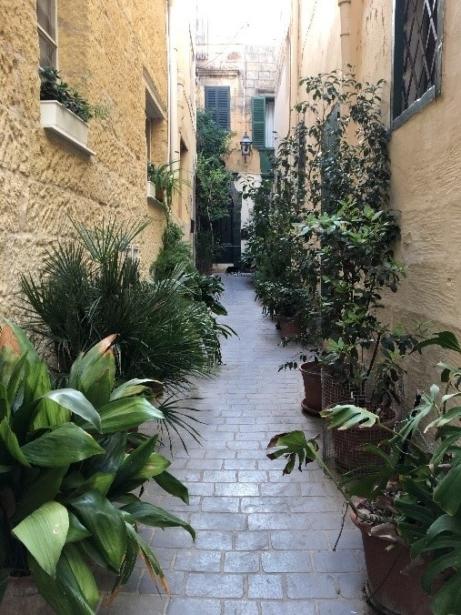 Gozo Malta TUI Gasse Städtereise Insel Sprachreise