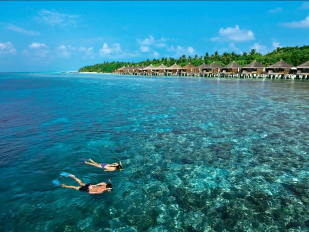 Malediven_Tauchen_Schnorcheln