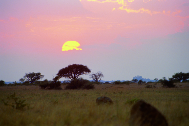 Moskitoschutz_Afrika_Safari_Fernreise