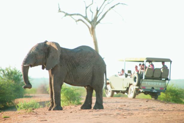 Moskitoschutz_TUI_Tippp.Reisen_Fernreise_Afrika