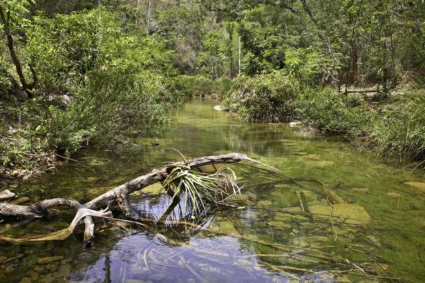 Durch das Herz Kubas_Naturpark El Cubano_Trinidad_Rundreisen