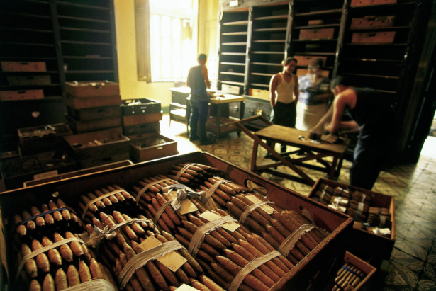 Durch das Herz Kubas_Zigarrenfabrik_Havanna