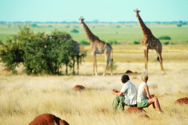 Moskitoschutz_Safari_Fernreise_Reisetipps_Reiseapotheke