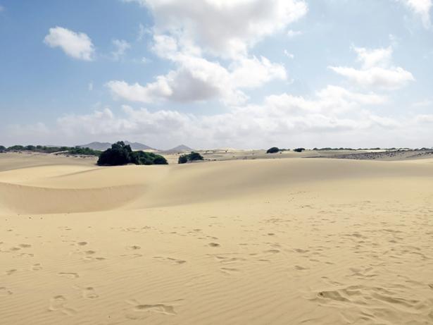 Ein Meer aus Sand: die Wüste Deserto de Viana.