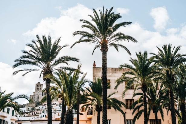 Ibiza-TUI-9
