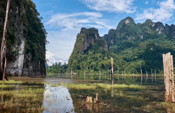 Thailand_Khao Sok Nationalpark_11 2017_(c)TUI Florian Albert. (57)