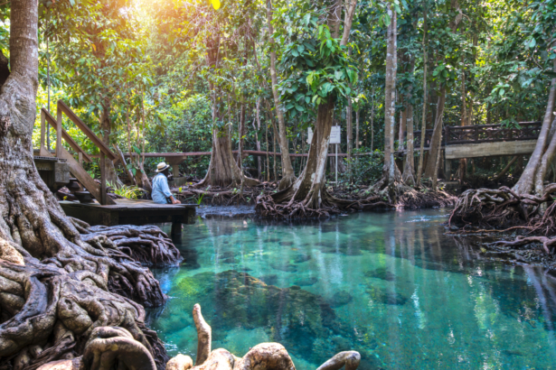 TUI_Blog_Thailand