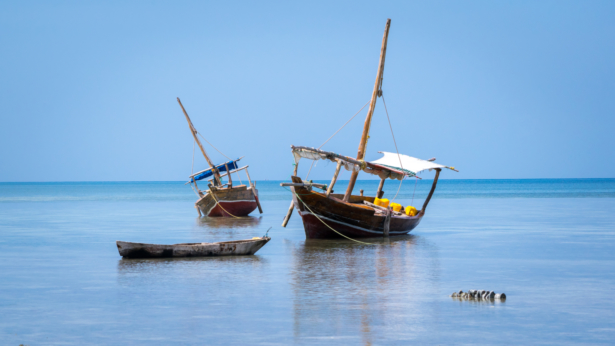 TUI Sansibar Wassersafari