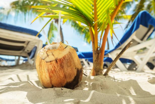 TUI Dominikanische Republik Kokosnuss