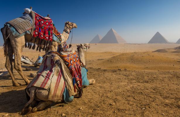 TUI Weihnachtsziel Ägypten