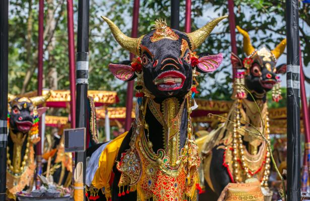 TUI Zeremonie Feuerbestattung Bali
