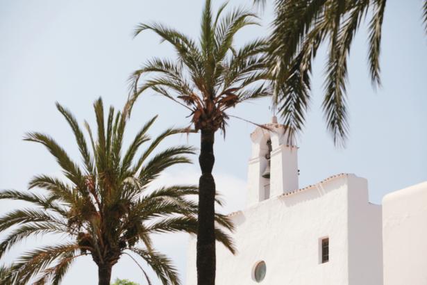 Ibiza Sant Josep Palmen