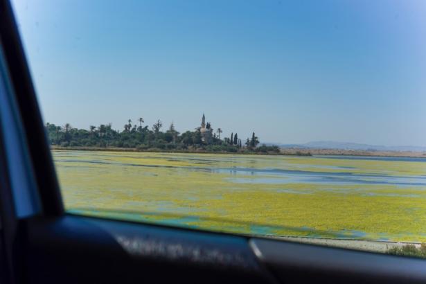 Zypern Roadtrip Astrid und Petra - Moschee Salzsee Larnaka