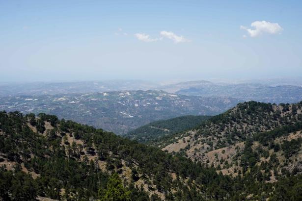 Ausflüge Zypern - Troodos Gebirge Ausblick