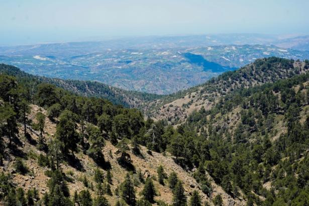 Troodos Gebirge Ausblick