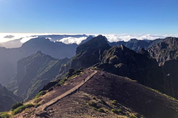 Eira do Serrado Madeira